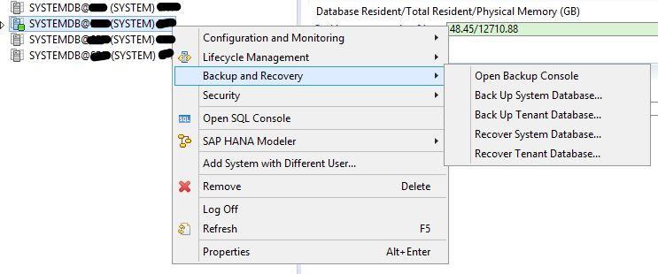 How to Perform HANA Database Restore