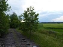 0210-1622_Transnistria_Rybn_20160605_08