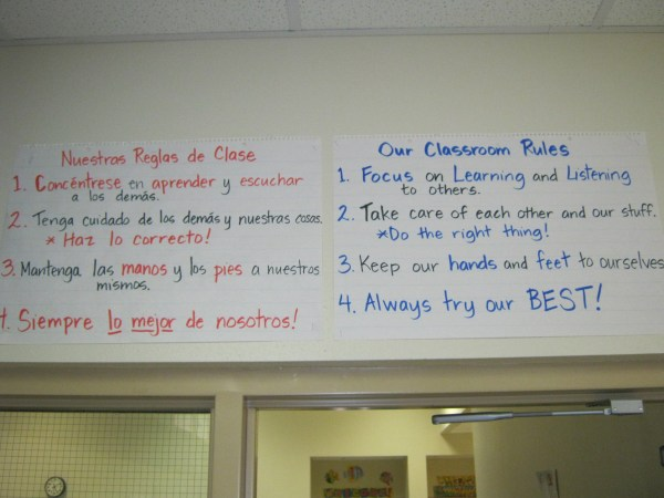 Teacher Stuff Dual Language '