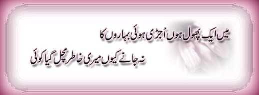 latest-urdu-poetry-background