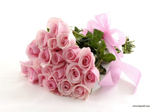 latest-HD-Pink Color-Flowers wallpaper