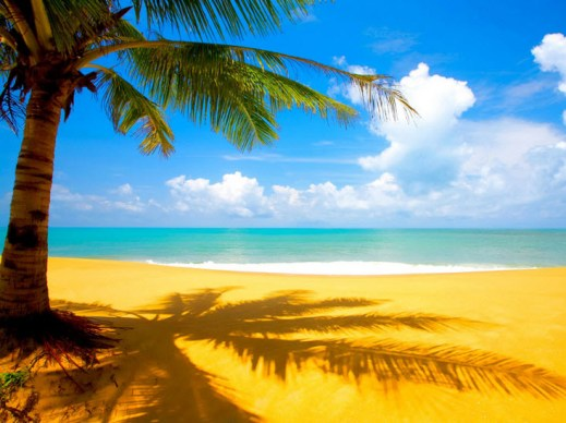 new-beach-wallpapers-2013 2014