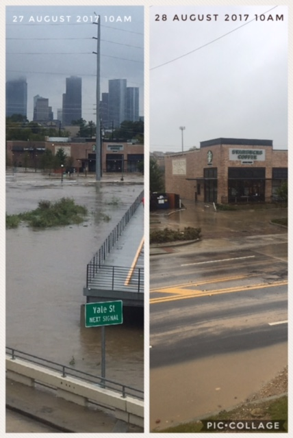 harvey flood photos houston heights