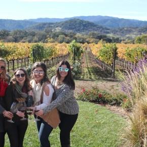 5 Must-Visit Wineries in Napa Valley