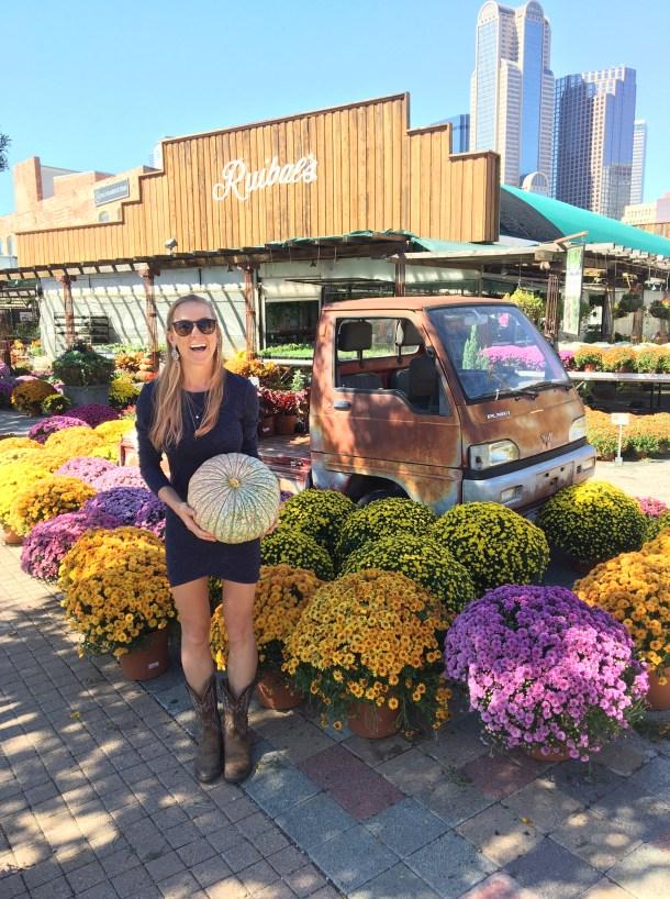 Ruibals Plants of Texas Dallas Skyline