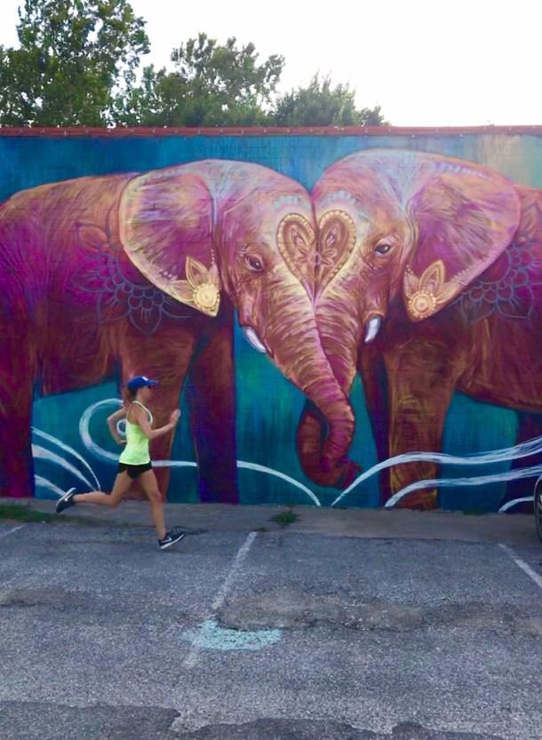 elephant houston mural heights