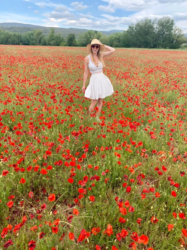 rousillon provence poppy fields