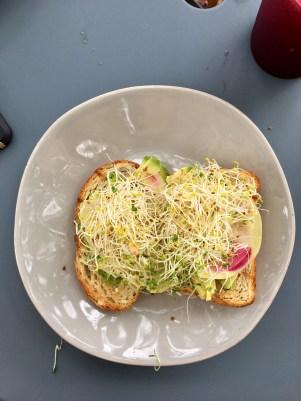 avocado toast bebidas