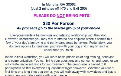 Let's talk dogs on Saturday, July 9th