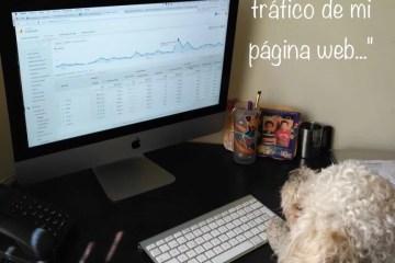 Conociendo el tráfico web