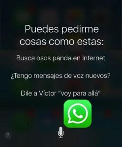 Actualización WhatsApp 2.17.22 iOS