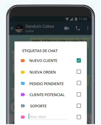 Categorias de chat Whatsapp para negocios