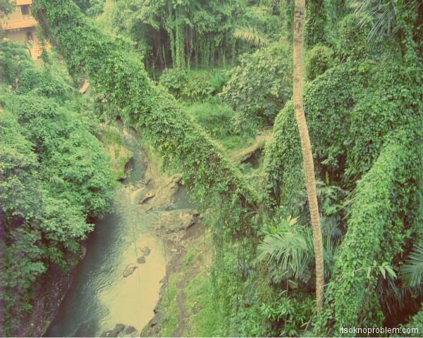 Реки в Убуде. 巴厘岛. 印尼