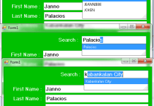 How to Autocomplete a TextBox with Multiple Columns Using Visual Basic 2008 And MS Acces Database
