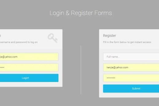 User Login and Registration Form