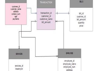 Salon Management System Database Design Project