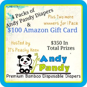 $100 Amazon Gift Card & 4 Packs of Andy Pandy Diapers Giveaway