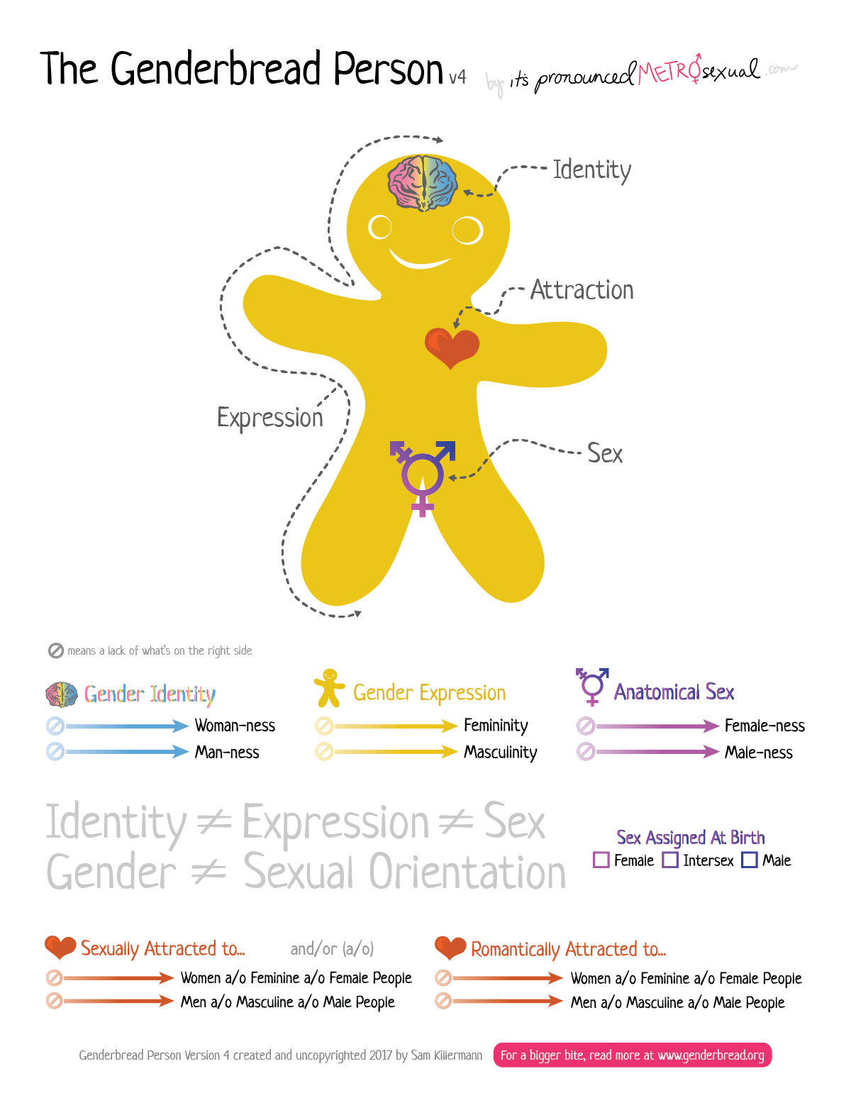 The Genderbread Person V4