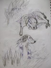 Garden sketches 2
