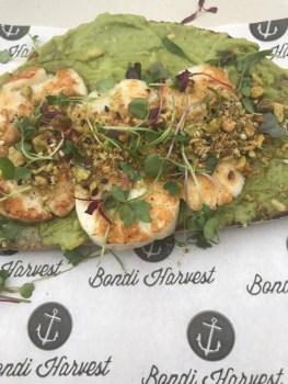 Avocado, Halloumi & Dukka Toast   It Started in LA
