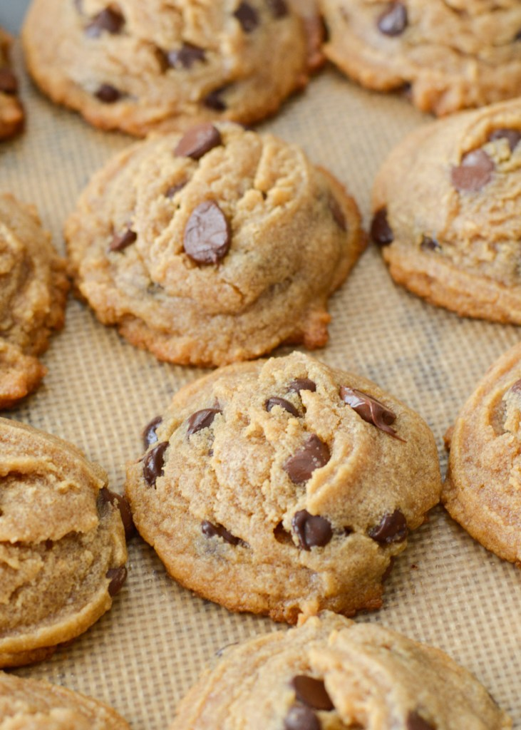 You will love these soft and chewy Keto Peanut Butter Cookies loaded with dark chocolate chips! Each cookie is about 3 net carbs making it a great low carb treat!