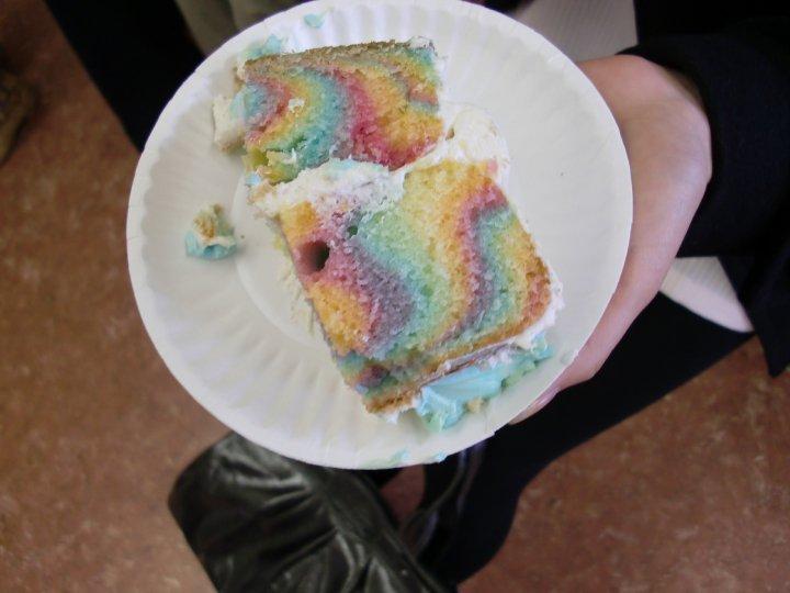 Rainbow ZebraCake (5/5)