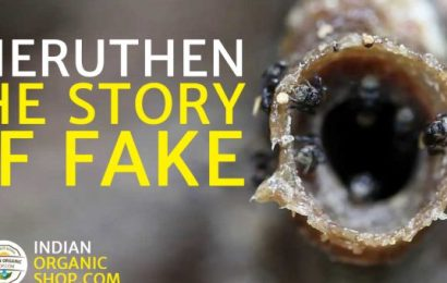 Cheruthen or small honey – The story of fake