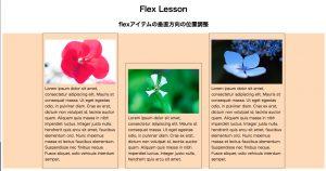 flex001