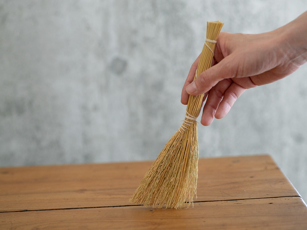 Nuigo Mini Broom-5