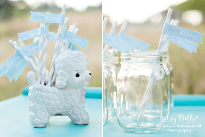 Mary Had A Little Lamb Baby Shower Table