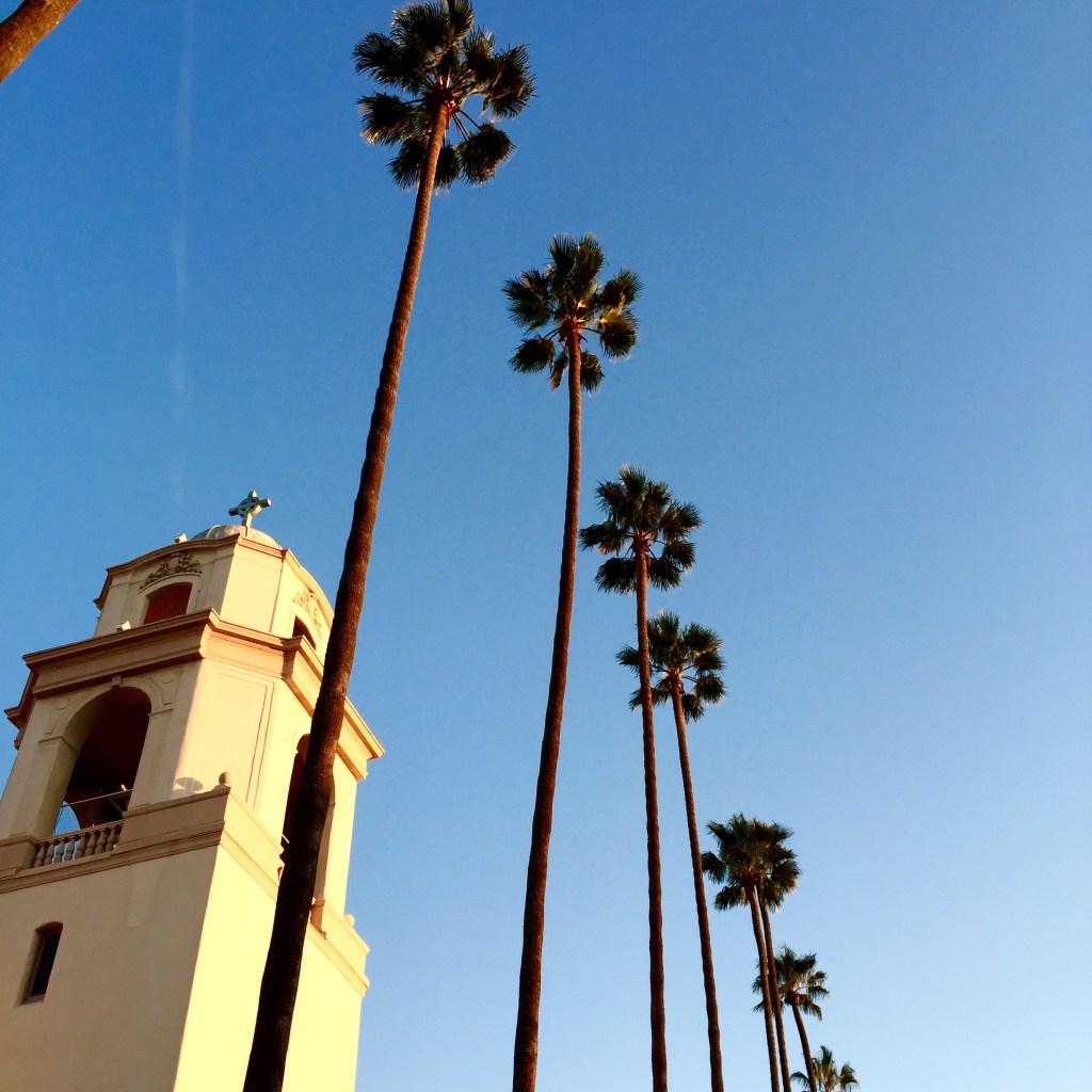 CA palm trees, itsy bitsy indulgences