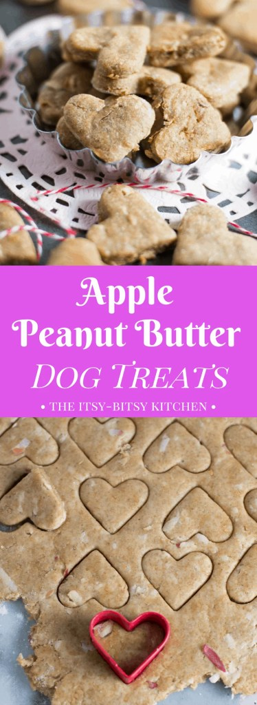 This recipe for easy homemade apple peanut butter dog treats uses all natural ingredients and is the perfect way to spoil your pet! Dogs love them! via itsybitsykitchen.com #dogtreats #peanutbutter #homemade