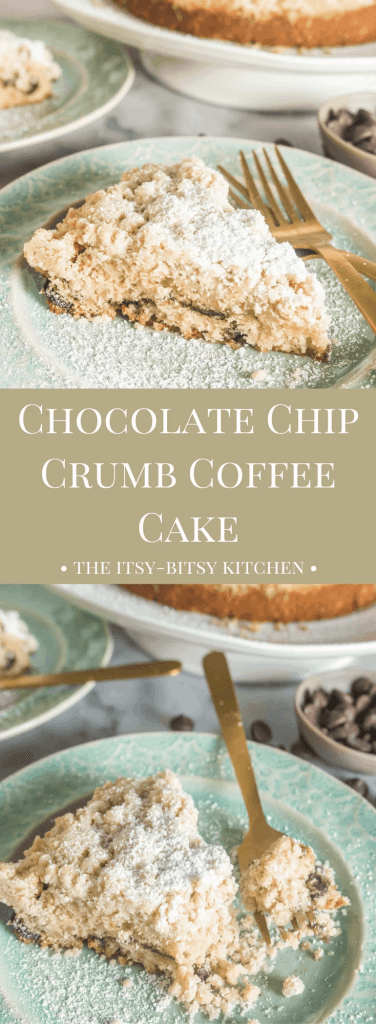 This simple chocolate chip crumb coffee cake is the ideal way to start any day, and it makes a perfect afternoon snack, too!