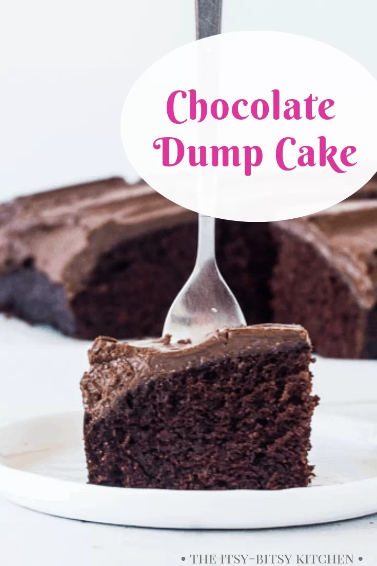 Pinterest image for chocolate dump cake with text