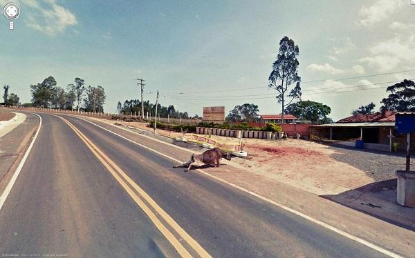google street view kicks 6
