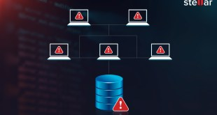 How to fix corrupted Index of SQL Server