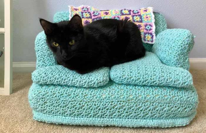 a black kitten lays on a light teal colored crochet cat couch