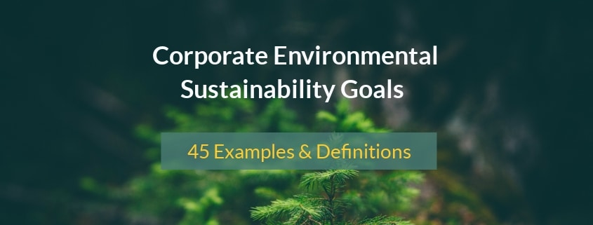 corporate sustainability examples