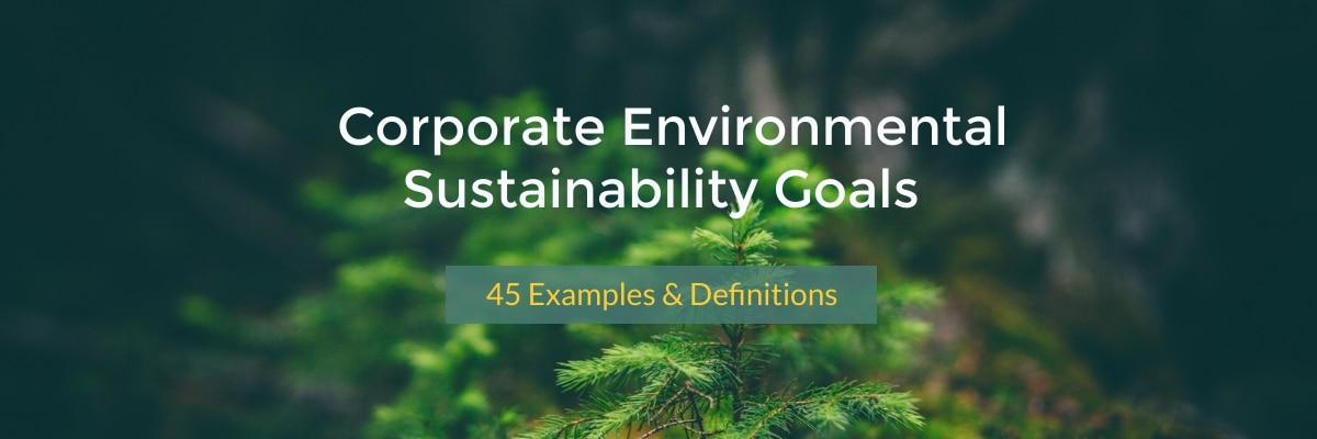 Corporate Sustainability Eco Friendly