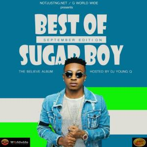 MIXTAPE: NotJustNG Ft. DJ Young Q – Best Of Sugarboy Mix (September Edition)