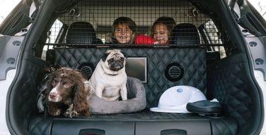 Nissan-X-Trail-4Dogs--el-coche-perfecto-para-las-aventuras-familiares