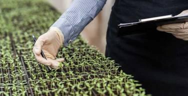Grupo-Agrotecnología-impulsa-Biopesticidas