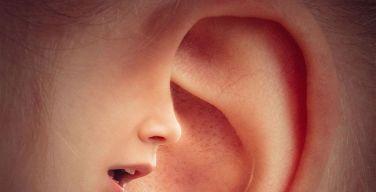 Hear-it AISBL informa que la pérdida auditiva es un asunto global