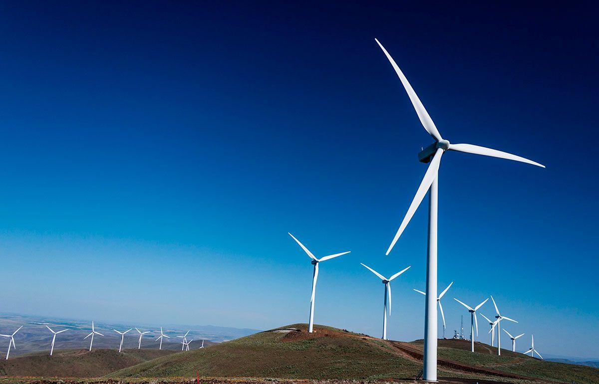ford-forma-parte-de-14-prestigiosas-iniciativas-para-proteger-al-planeta