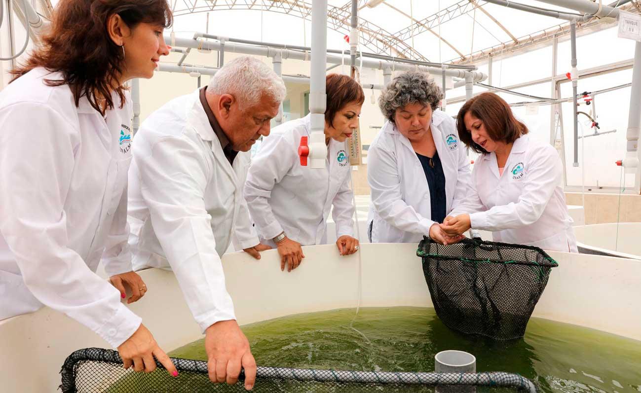 con-la-red-idi-mas-de-1800-cientificos-y-500-laboratorios-de-universidades-ofrecen-soporte-a-mipymes