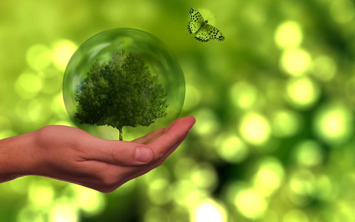 ecopy-un-sistema-de-gestion-de-residuos-inteligente-gano-desafio-de-la-universidad-esan