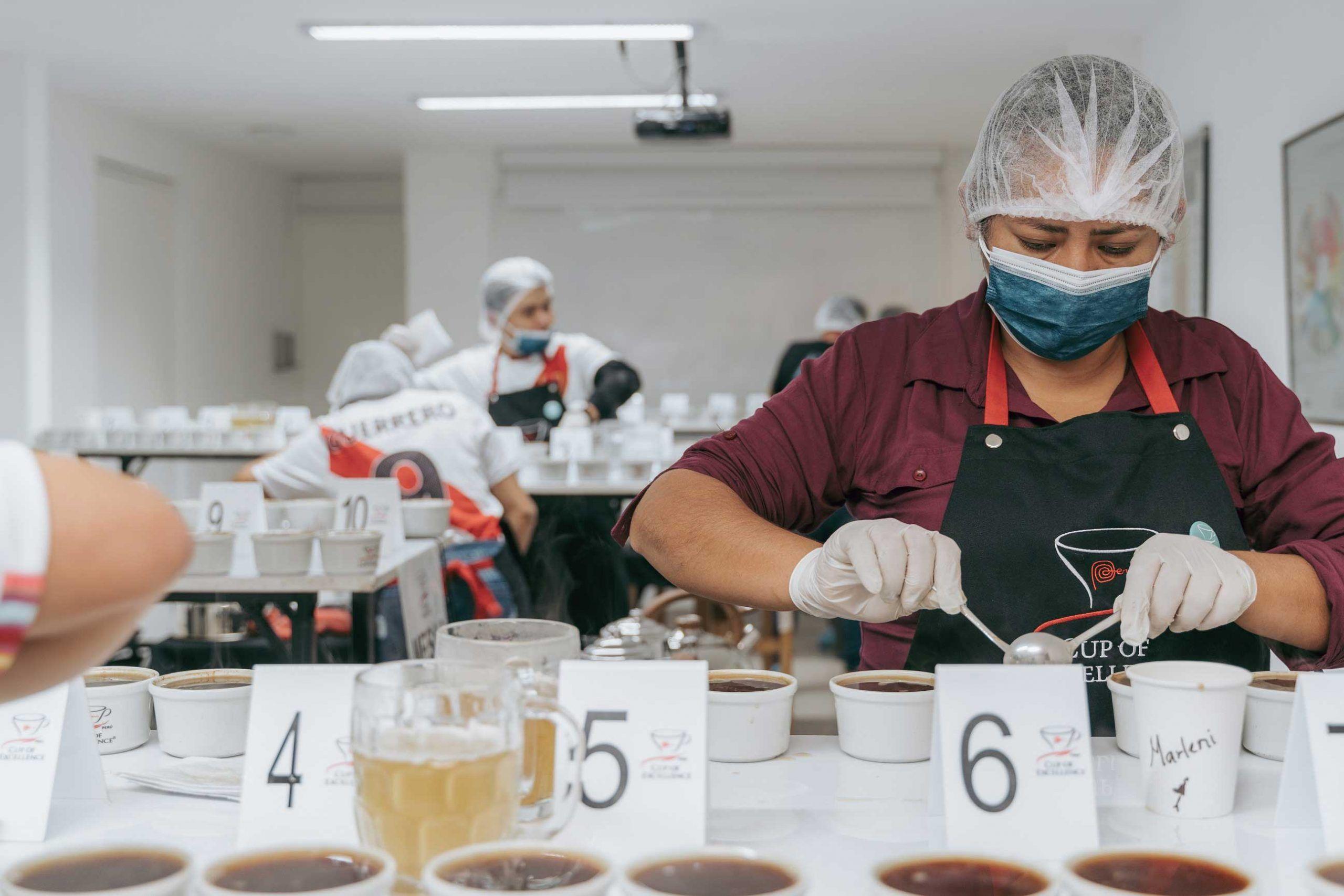 taza-de-excelencia-peru-2021-114-cafes-clasificaron