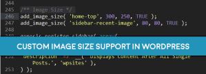 Custom Image Sizes