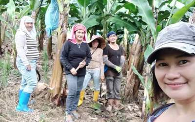 Making agricultural work a good job: fighting for farm workers' rights to freedom of association