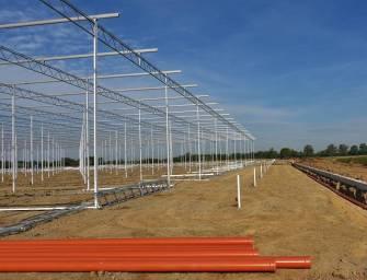Elektrárna Dětmarovice dodá teplo skleníkům